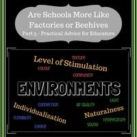 Are Schools More Like Factories or Beehives? Schools as Factories - Part 3