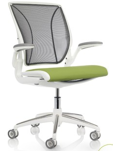 Diffrient World Chair